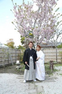 翔君 ゆほちゃん 桜の木